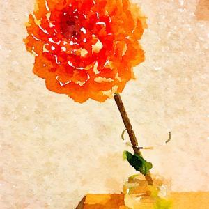 母に供えたはずの仏花