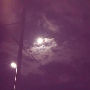 一人で泣いた冬至の夜