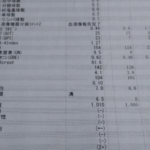 IP療法5-2 (I・15-5) パンパン