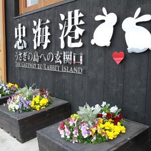 うさぎの島302(3/28)5