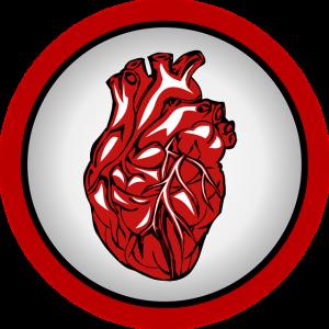 iPS細胞治療の大きな進歩! iPS細胞を用いて心臓移植に成功(大阪大学研究チームによる) 心臓ドナー不足を解消する新たな治療法発見か!