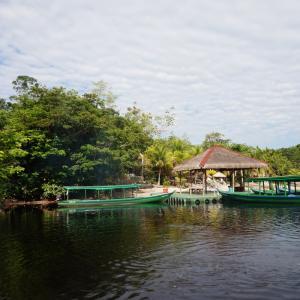 【ブラジル国内旅行】宿泊先はジャングルの中のホテル!アマゾン・エコパークジャングルロッジについて