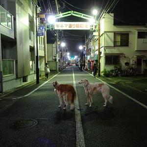 今夜は蒲田で少し頑張りました