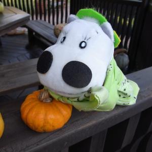 かぼちゃと大行進のぼく