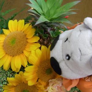 お花大好きなぼく