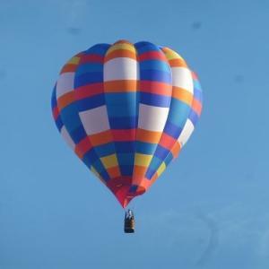 気球 と コスモス