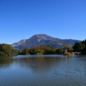 三島池 米原