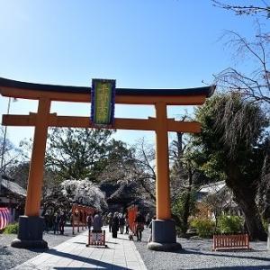 平野神社 '20 桜