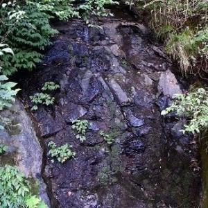 豊岡市 「水山の滝」 水はなし