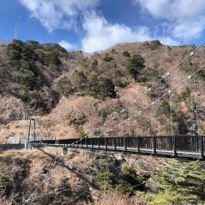 【鬼怒川温泉】絶景&癒しの散策スポット