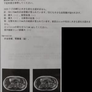 MRI検査の結果と抗体検査🏥