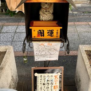 宮崎市内中心部の猫だまり(山形屋裏あたり)