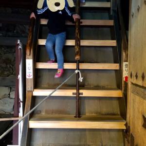 犬山城② いきなりの急階段!これは「あれ」レベルではないか?と思いきや