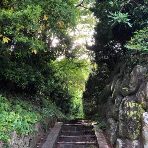 国道135号線を河津駅方面へお散歩