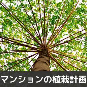マンションの植栽計画