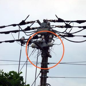 通学路の電柱にカラスが巣作りを始めましたので東電さんに除去の依頼をしました。