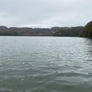 出逢い多き津久井湖でした