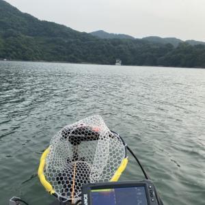 初バスGET!!な津久井湖でした