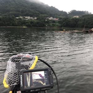 相も変わらずドSな津久井湖でした