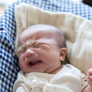 313. 赤ちゃんの泣き声が聞こえた。