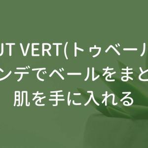 TOUT VERT(トゥベール)のファンデに手を出した、安いのに肌にベールをまとえるベースメイク