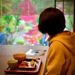タグリッソ継続❣️京都で紅葉狩り❣️