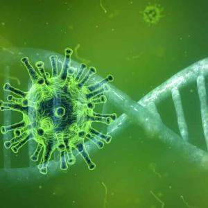日本国内、新たに1万人以上が新型コロナウイルスに感染 過去最多を更新(2021年7月29日)