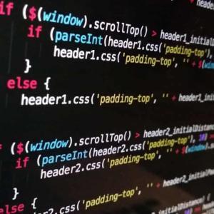 ワイ「Python、C#、Java、Golang、HTML、CSS、JavaScriptできます!」面接官「はい、採用!」