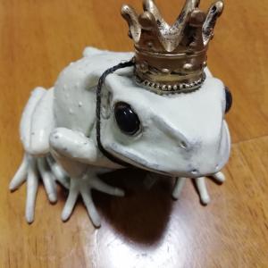 カエルは「明るい未来」や「成功」など幸せを運んでくるスピリチュアルな力がある♪箱入り主婦んちは今回はハンサムな白い幸せのカエルの王様ゲットで前進かな♥