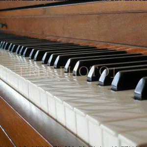 ピアノ・キ-ボ-ド画像