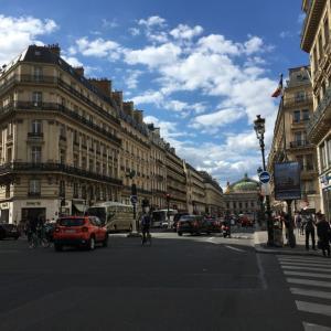 今年のフランスは16年ぶりの暑さ?