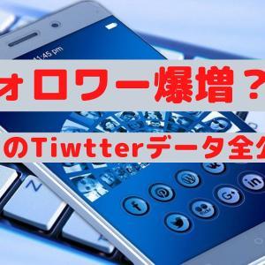 【ツイッター】10日間のフォロワー増は272人!【データ全公開】