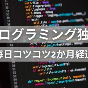 プログラミング独学が面白くなってきた?毎日コツコツで2か月経過