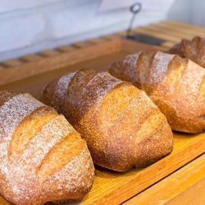 古代麦のパン、古代麦のオーガニックチョコナッツブレット(2019.10.10)