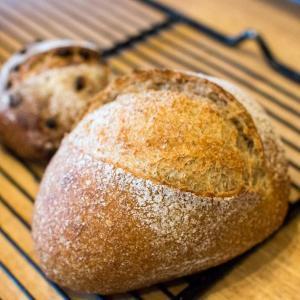 古代麦のパンを本日も焼き上げております(2019.11.10)