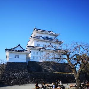 初めての訪問記 冬晴れの空に映える小田原城