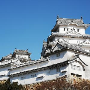 桜の小田原城を見に行きました