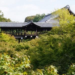 11月初旬の東福寺