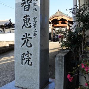 京都市長選が始まりました