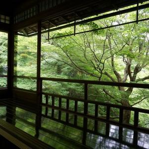 瑠璃光院の茶室「喜鶴亭」