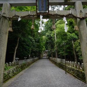 続)崇道神社:2020年6月