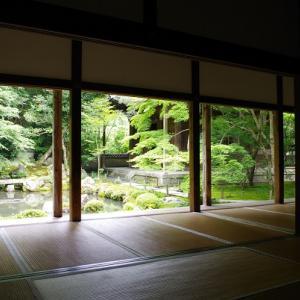 書院から眺めた庭園(蓮華寺)