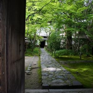 蓮華寺のお庭は次回のブログで…