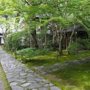 続)書院から眺めた庭園(蓮華寺)