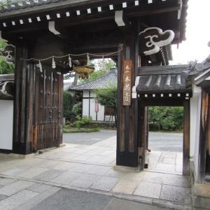 本満寺の桜:2020年8月