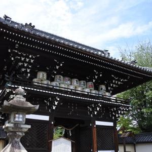 京都散歩ブログ 梅宮大社
