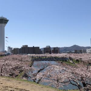北海道道南観光で実際に行ってみたお花見ドライブコース