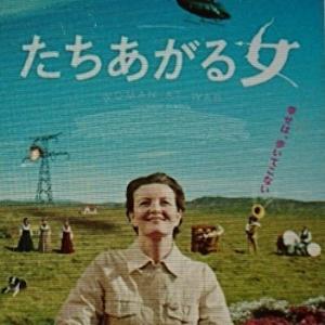 久しぶりの富士山と元気が出ない時ステキな北欧映画5編(DVD)です