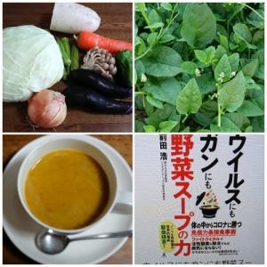目からうろこ 野菜スープの力