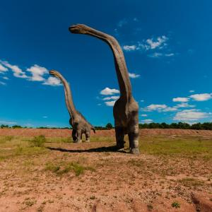 ブラキオサウルス 「巨大恐竜界のスーパースター 」